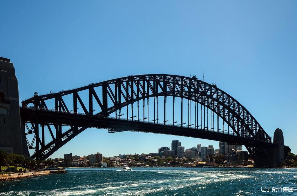 大型钢结构桥梁